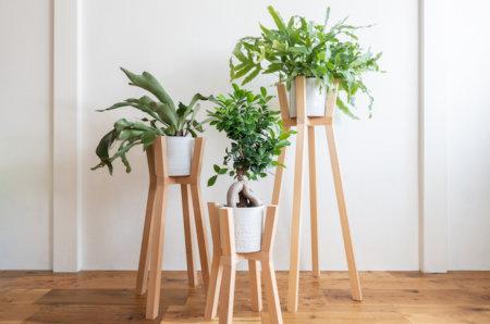 スタイリッシュな植物プランタースタンドを作ってみる